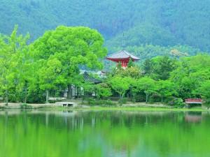 japan-kyoto-tour-377-30