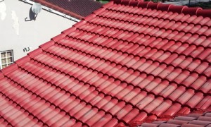 roof_painting2